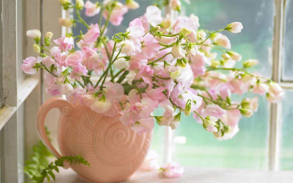 pea flower arrangements in ceramic pot