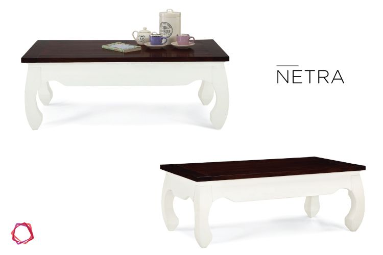 We love the antiquie-inspired feel of the Netra coffee table.