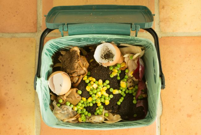 compost waste for an eco-friendly home