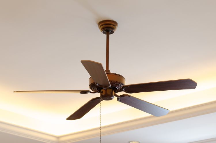 Reverse the direction of your fan blades to ensure your room stays warm.