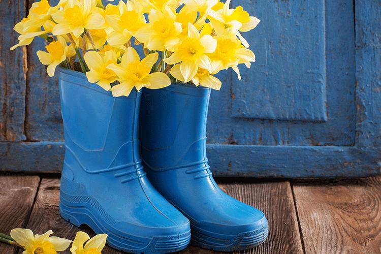 Monsoon decor_gum boots