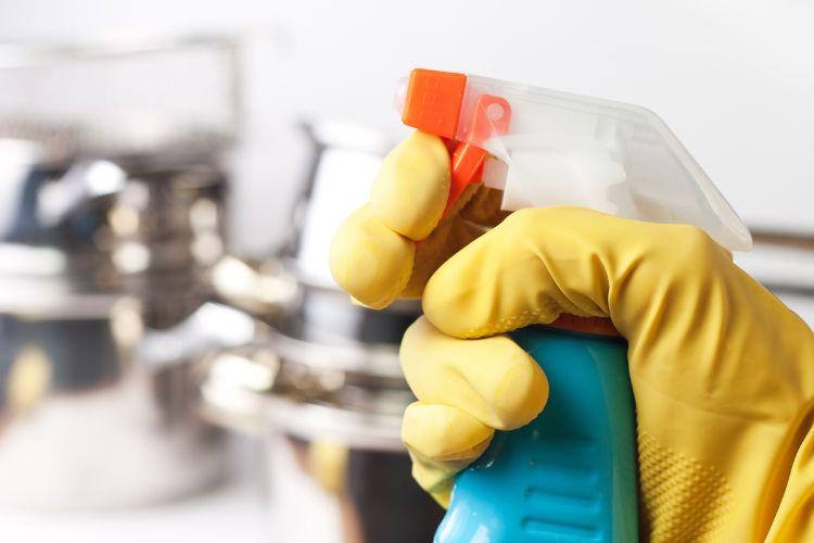 termite-free kitchen home remedies