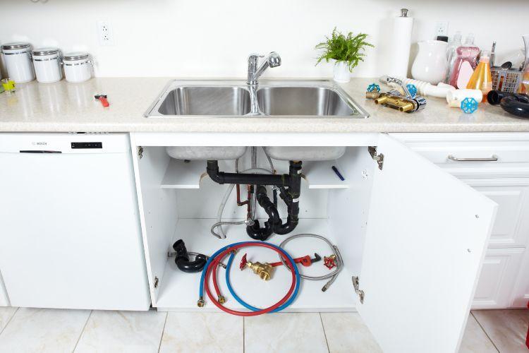 termite-free kitchen pipes