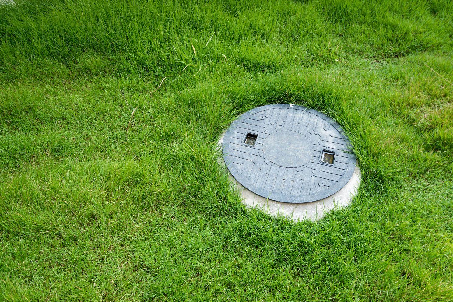 basic vastu for home-septic tank-grass-greenery