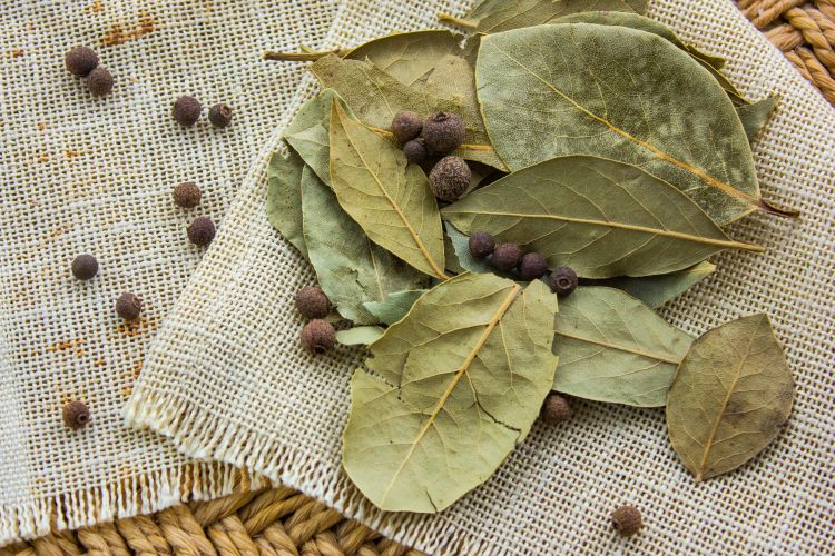 cockroaches-bay leaves-crushed bay leaves-dry bay leaves