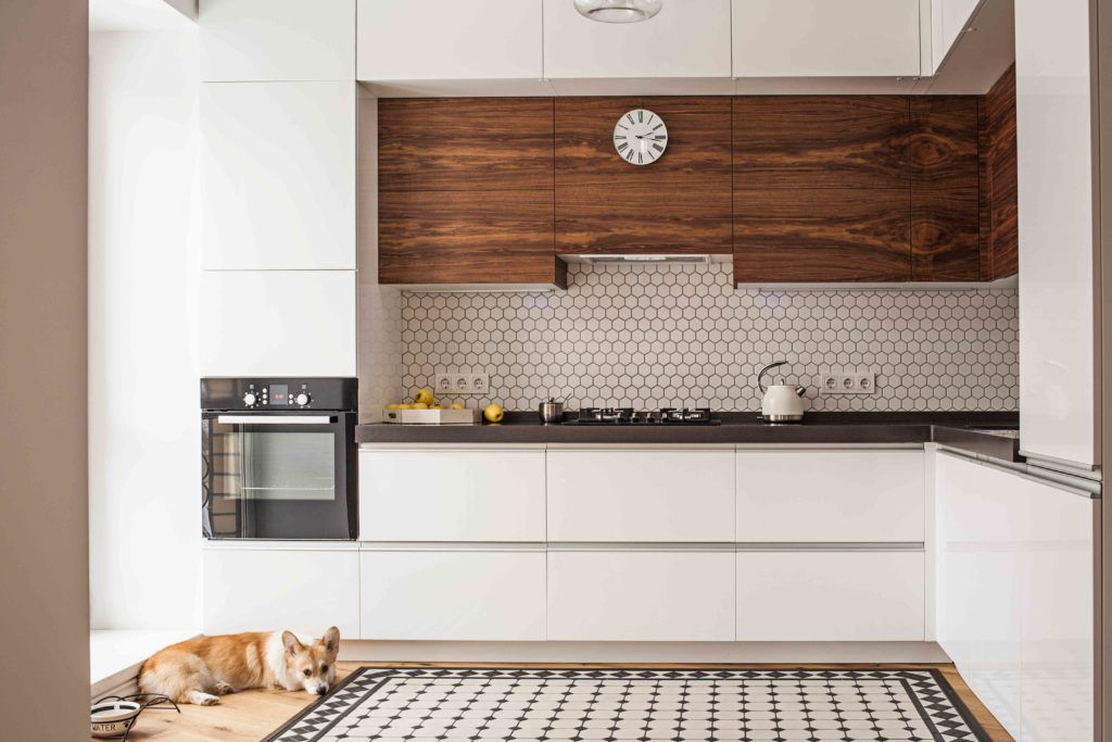 pet-friendly flooring-stone tile floor-flooring for pets-dog-kitchen