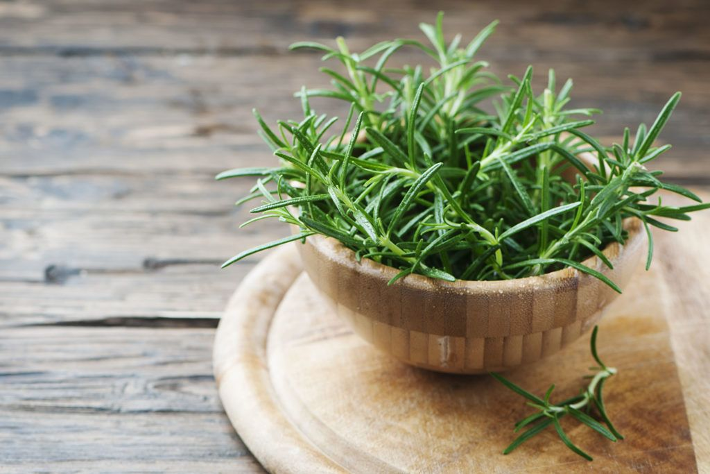 plants that keep bugs away-rosemary-leaves-bowl