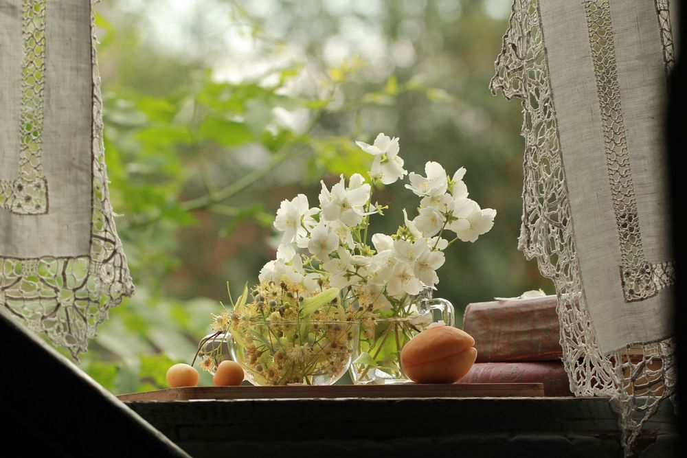 indoor flowering plants-white curtain-jasmine flower