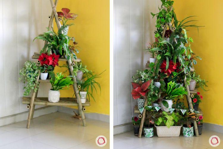diy christmas tree-potted plants christmas tree