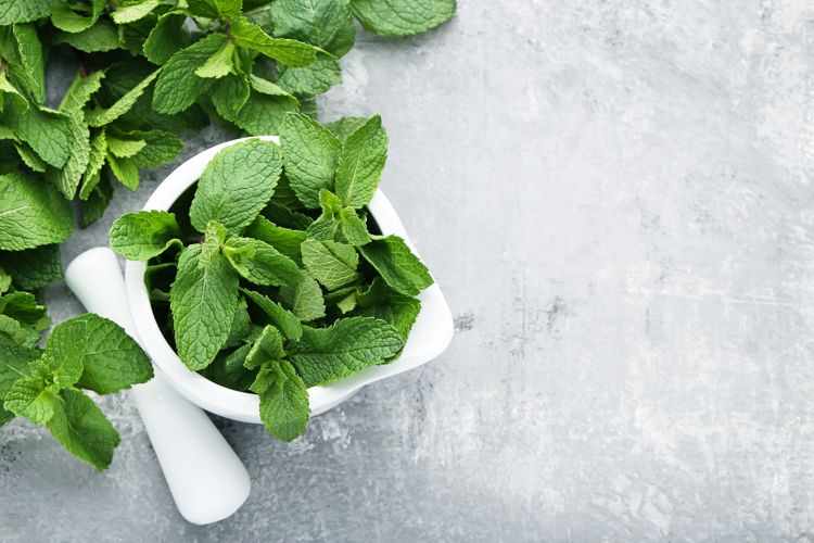 home-remedies-for-flies-inside-mint-basil-spray
