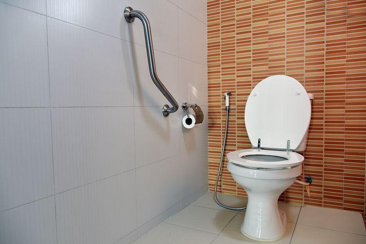 bathroom-ideas-toilet-rail-seat-for-elders