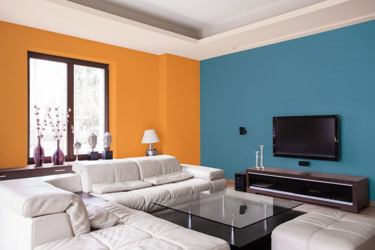 wall colour combination for living room-sofa designs-tv unit-window