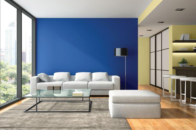 blue wall-yellow wall-white sofa designs