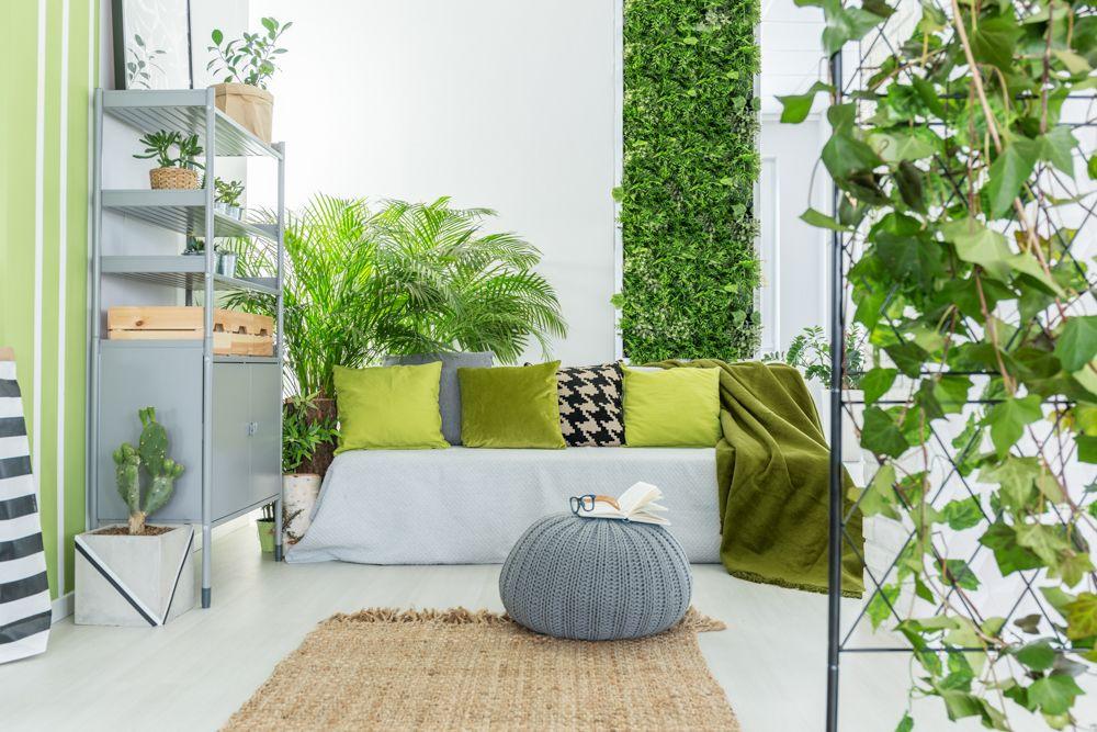 ivy plant-vertical garden ideas