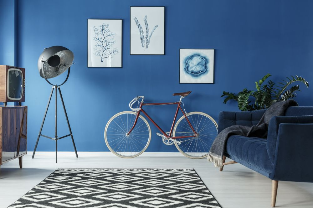 asian paints colour of the year-blue wall paint-blue sofa