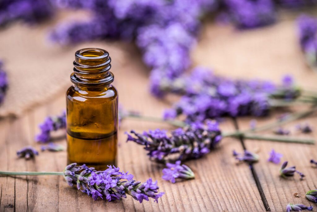 Alternative to Naphthalene Balls-Lavender oil