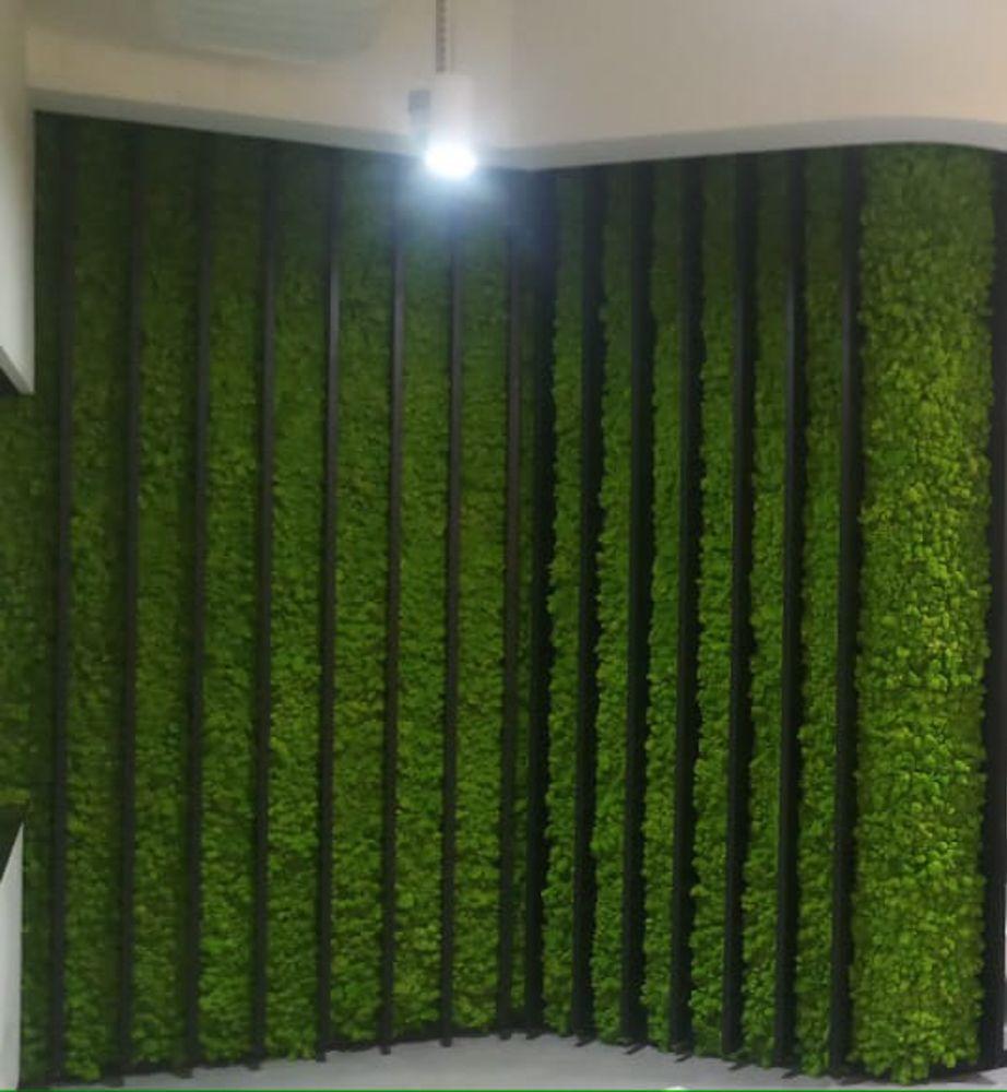 Moss frame-moss wall-l shape