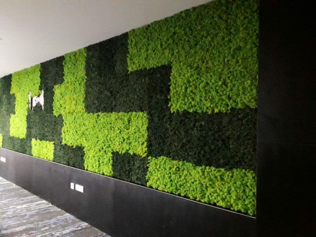 Moss frame-zigzag