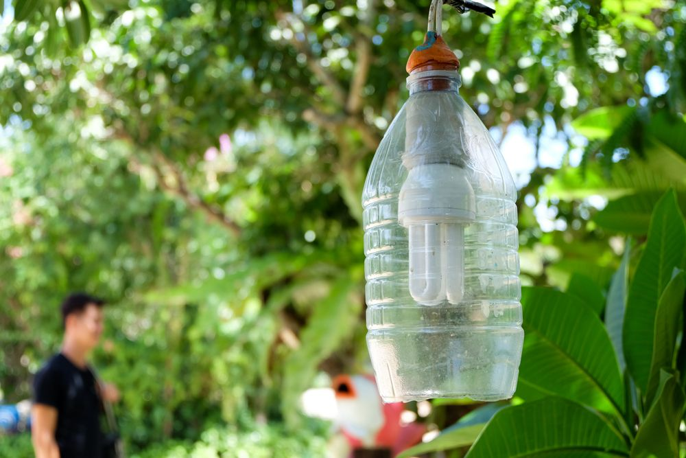 diy ideas for the home-plastic bottles-bulb and electricals-garden lighting