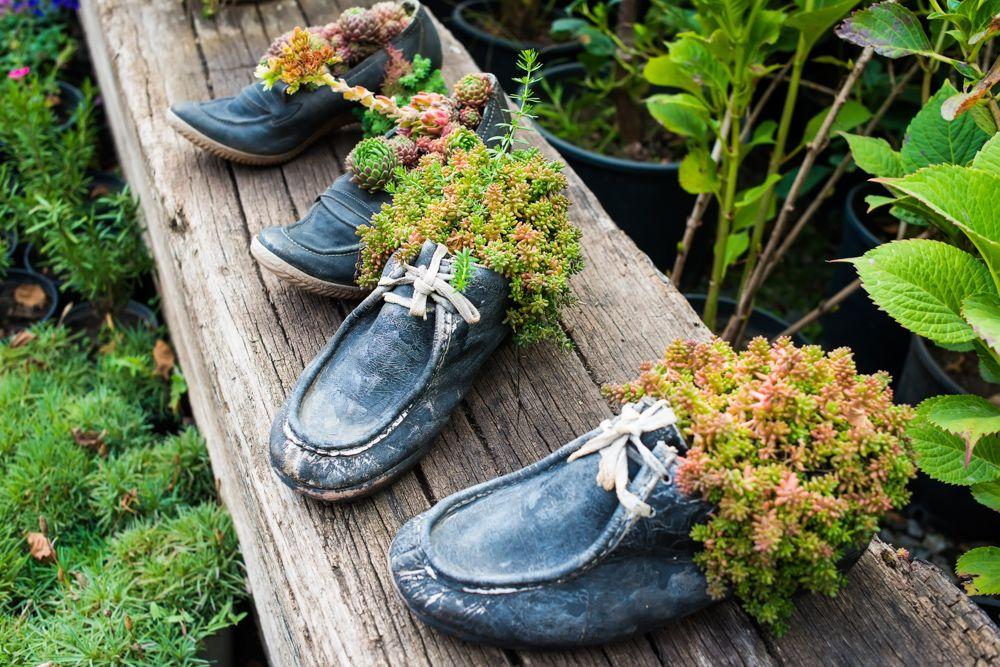 diy plant pots-shoe