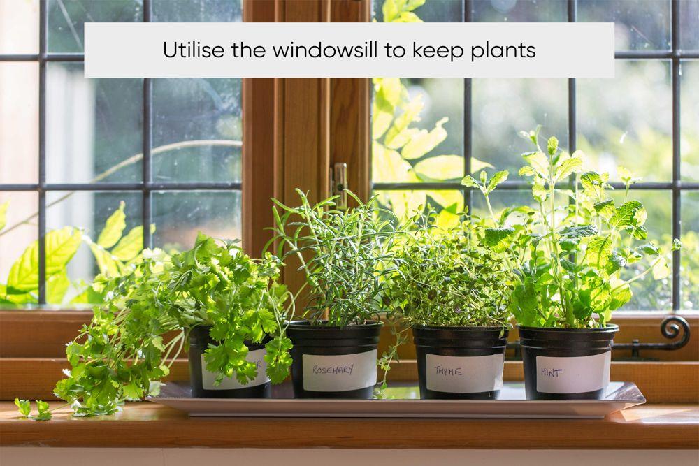 kitchen-organization-windowsill-plants-bottles