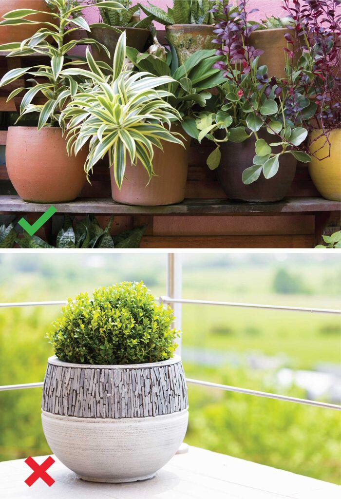 watering indoor plants-pots