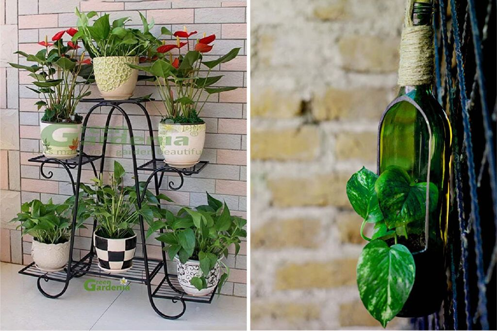 decorating-with-plants-wrought-iron-stands-bottle-planters
