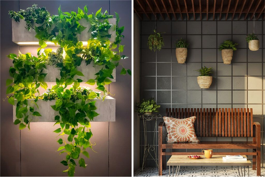 decorating-with-plants-hanging-on-wall-bench-rafters