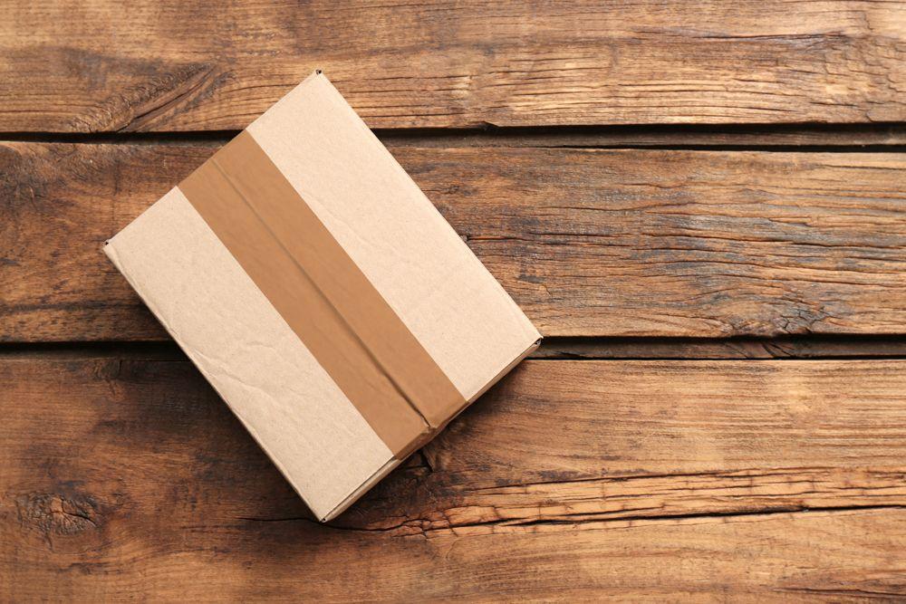 termites in wooden furniture-cardboard box