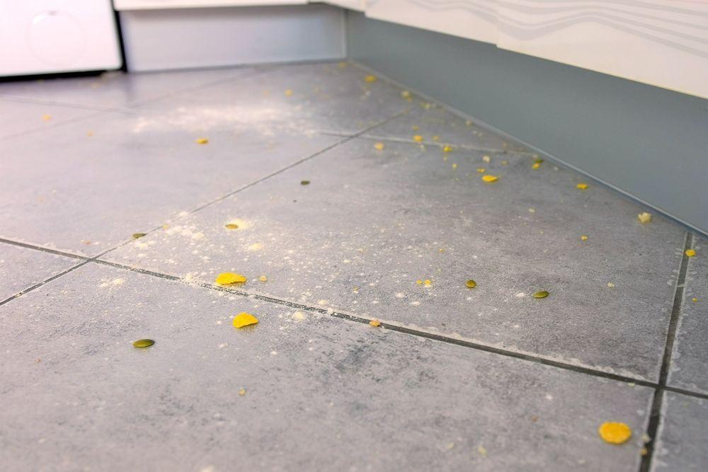 remedies for cockroaches-food crumbs on floor