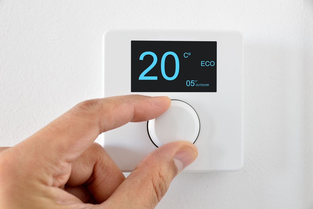 how to get rid of lizards - thermostat