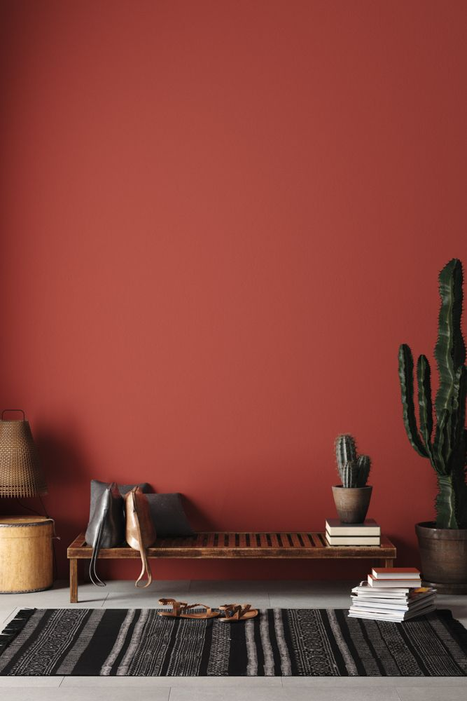 interior house colours-earthy brown wall