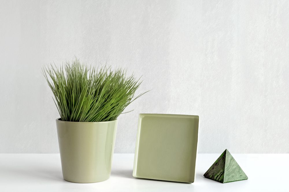 vastu shastra for house_pyramid_potted plant_desk accessories