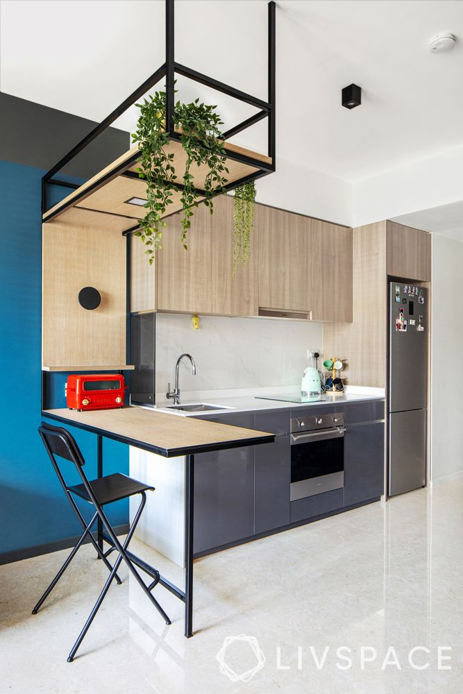 open kitchens-minimal design-hanging planters-breakfast bar