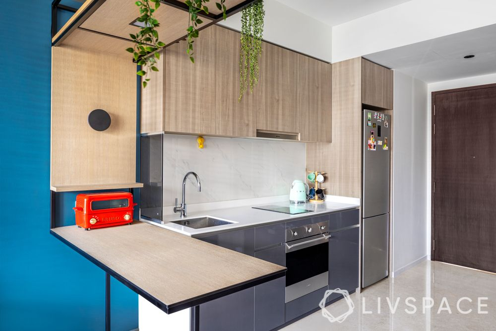 room colour ideas-creepers-plants-wooden cabinets-blue cabinets